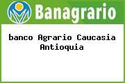 Teléfono y Dirección Banco Agrario, Av Pajonal 14-84, Caucasia, Antioquia