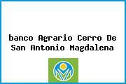<i>banco Agrario Cerro De San Antonio Magdalena</i>