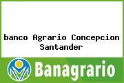 <i>banco Agrario Concepcion Santander</i>