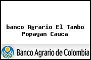<i>banco Agrario El Tambo Popayan Cauca</i>