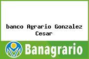 <i>banco Agrario Gonzalez Cesar</i>