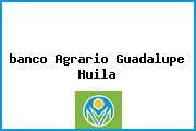 <i>banco Agrario Guadalupe Huila</i>