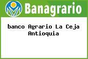 <i>banco Agrario La Ceja Antioquia</i>