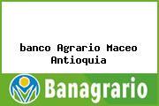 <i>banco Agrario Maceo Antioquia</i>