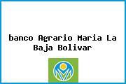 <i>banco Agrario Maria La Baja Bolivar</i>