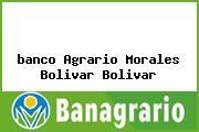 Teléfono y Dirección Banco Agrario,  Parque Principal – Calle Central Morales, Morales (Bolívar), Bolívar