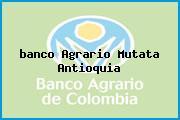 <i>banco Agrario Mutata Antioquia</i>
