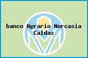 <i>banco Agrario Norcasia Caldas</i>