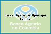 <i>banco Agrario Oporapa Huila</i>
