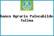 <i>banco Agrario Palocabildo Tolima</i>
