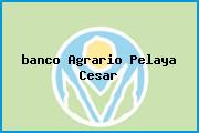 <i>banco Agrario Pelaya Cesar</i>