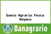 <i>banco Agrario Pesca Boyaca</i>