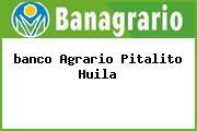 <i>banco Agrario Pitalito Huila</i>