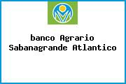<i>banco Agrario Sabanagrande Atlantico</i>