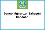<i>banco Agrario Sahagun Cordoba</i>