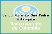 <i>banco Agrario San Pedro Antioquia</i>