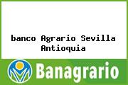 <i>banco Agrario Sevilla Antioquia</i>