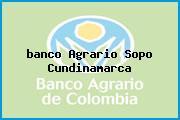 <i>banco Agrario Sopo Cundinamarca</i>