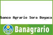 <i>banco Agrario Sora Boyaca</i>