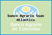 <i>banco Agrario Suan Atlantico</i>