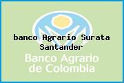 <i>banco Agrario Surata Santander</i>