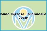 <i>banco Agrario Tamalameque Cesar</i>