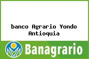 <i>banco Agrario Yondo Antioquia</i>