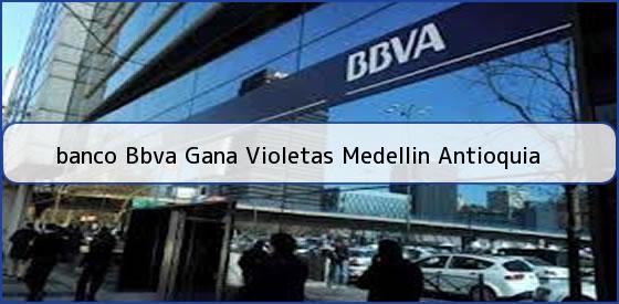 <b>banco Bbva Gana Violetas Medellin Antioquia</b>