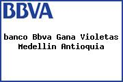 <i>banco Bbva Gana Violetas Medellin Antioquia</i>