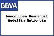 <i>banco Bbva Guayaquil Medellin Antioquia</i>