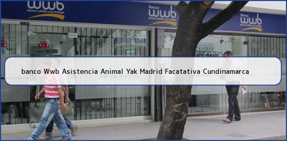 <b>banco Wwb Asistencia Animal Yak Madrid Facatativa Cundinamarca</b>