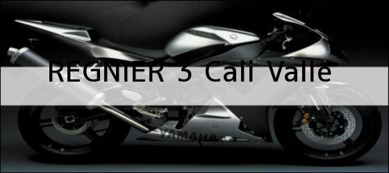 Teléfono, Dirección y otros datos de contacto para REGNIER 3, Cali, Valle, Colombia