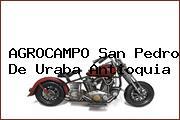 AGROCAMPO San Pedro De Uraba Antioquia