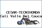 CESAR-TECNIHONDA Cali Valle Del Cauca