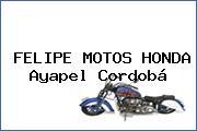 FELIPE MOTOS HONDA Ayapel Cordobá