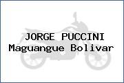 JORGE PUCCINI Maguangue Bolivar