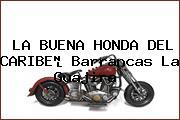 LA BUENA HONDA DEL CARIBE Barrancas La Guajira