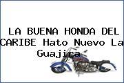 LA BUENA HONDA DEL CARIBE Hato Nuevo La Guajira