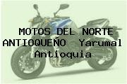 MOTOS DEL NORTE ANTIOQUEÑO  Yarumal Antioquia