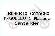 ROBERTO CAMACHO ARGUELLO 1 Malaga Santander
