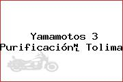 Yamamotos 3 Purificación Tolima