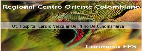 <i>Ut. Hospital Cardio Vascular Del Niño De Cundinamarca</i>