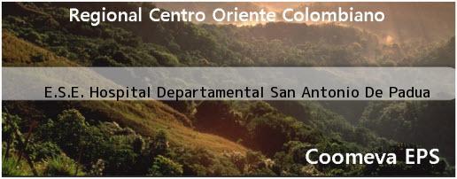 <i>E.S.E. Hospital Departamental San Antonio De Padua</i>