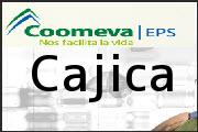 Teléfono Coomeva EPS Cajica, Colsubsidio