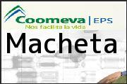 Teléfono Coomeva EPS Macheta, E.S.E. Hospital San Martin De Porres Centro De Salud Macheta