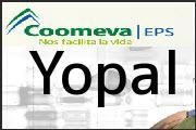 Teléfono Coomeva EPS Yopal, Punto De Atencion Yopal