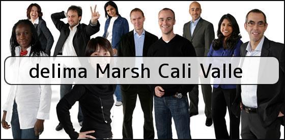 <b>delima Marsh Cali Valle</b>