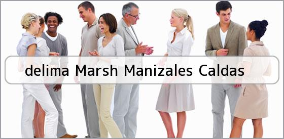 <b>delima Marsh Manizales Caldas</b>