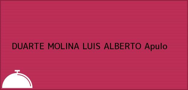 Teléfono, Dirección y otros datos de contacto para DUARTE MOLINA LUIS ALBERTO, Apulo, , Colombia