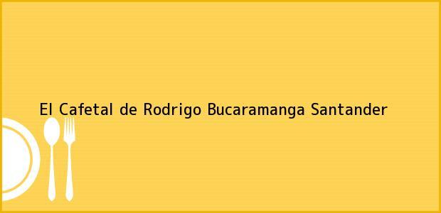 Teléfono, Dirección y otros datos de contacto para El Cafetal de Rodrigo, Bucaramanga, Santander, Colombia